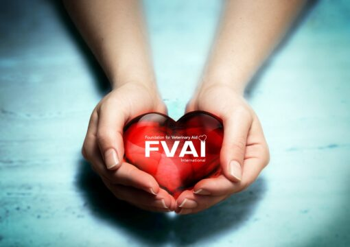 Donate to the FVAI