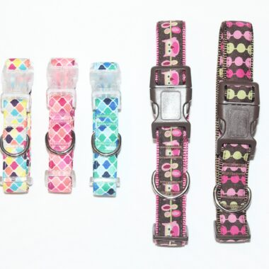 Collars various colours ans sizes