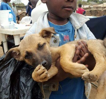 Little boy with his dog in Tanzania