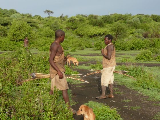 Hadzabe hunters with their dogs in Tanzania