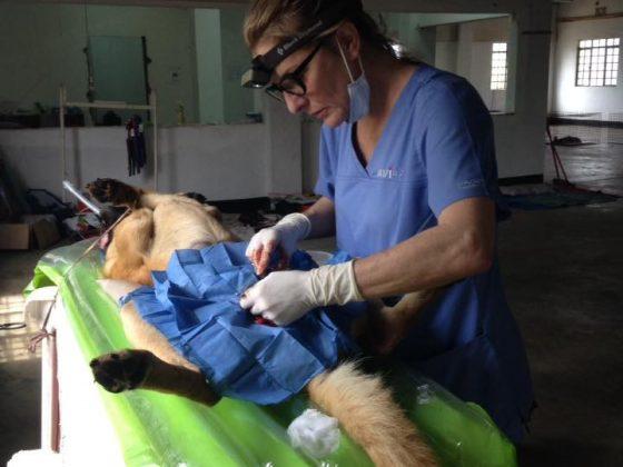 FVAI clinic in Tanzania