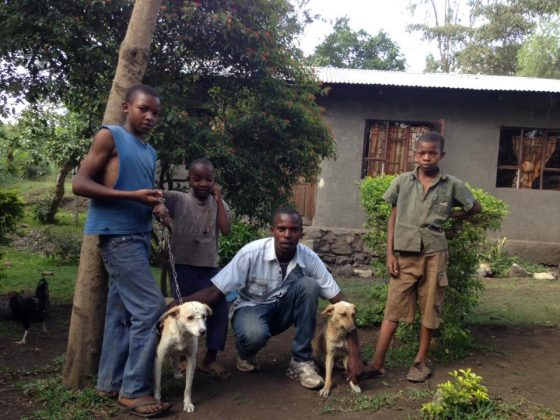 Young tanzanians and their dogs