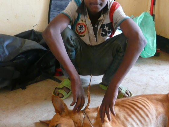 A young Tanzanian and his dog