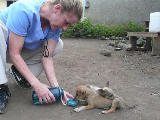 Dr Isabelle De Han, FVAI volunteer in Tanzania