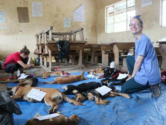 Recovery in a classroom in Tanzania