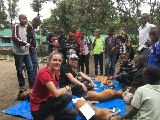 End of the day at FVAI clinic in Arusha. Children are waiting after their dog to wake up