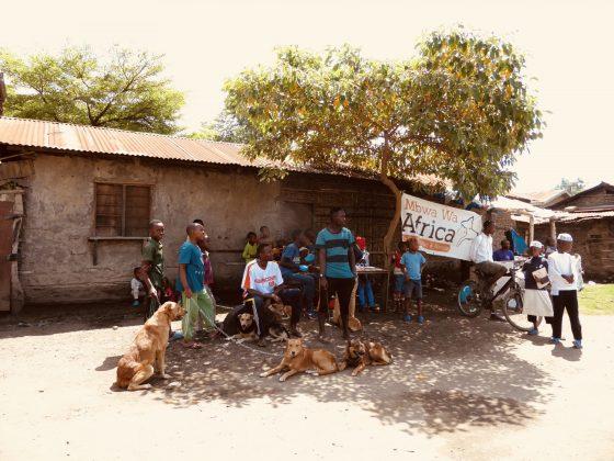 Rabies vaccination clinic in Tanzania