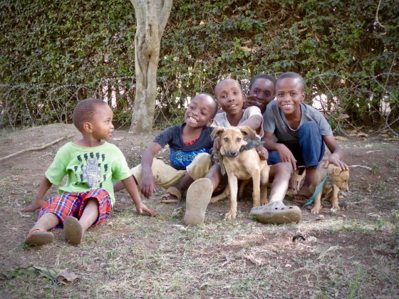 In Africa, children bring their dog to FVAI clinic