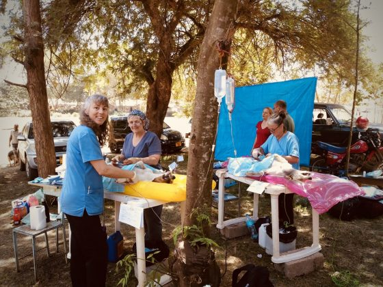 Outdoor vet clinic in Baraa, Tanzania