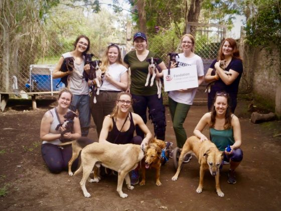Our 8 vet tech students in Tanzania. Thank you to Fondation du Collège Lionel-Groulx for their support.