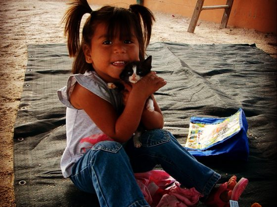 A cute owner with her kitten in Mexico