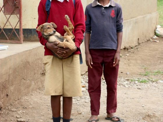 Students come to FVAI clinic to have their dog vaccinated against rabies