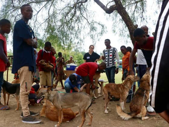 A very busy vaccination station in Arusha, Tanzania