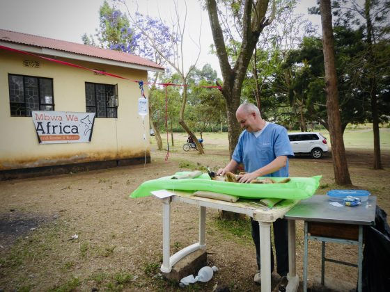 Alain, FVAI volunteer is assisting in surgery at spay neuter clinic in Tanzania