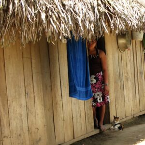 Foundation for Veterinary Aid International in Belize