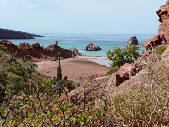 site de camping à Espiritu Santo, Baja California