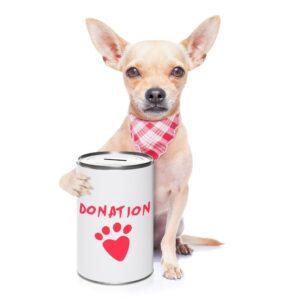 La FAVI est officiellement reconnue comme organisme de bienfaisance!