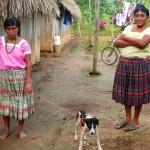 Femmes mayas à une clinique de la FAVI au Belize