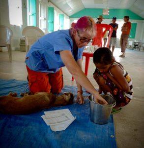 Retrait de tiques au réveil à la clinique de la FAVI à Sarteneja, Belize