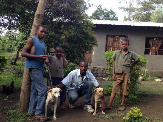 Jeunes tanzaniens et leurs chiens