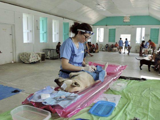 Dre Goineau au Belize