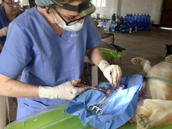 Chirurgie à la clinique de la FAVI en Tanzanie