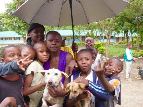 Des jeunes tanzaniens à la clinique de vaccination et de stérilisation de la FAVI à Arusha, Tanzanie.