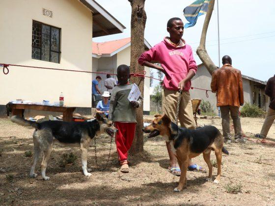 """Salle"" d'attente à Baraa en Tanzanie"