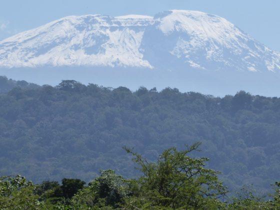 Majestueux Kilimandjaro! Le sommet de l'Afrique.