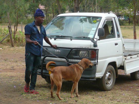 Ce jeune homme tanzanien s'occupe très bien de son chien!