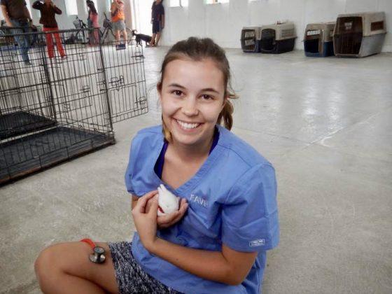 Visite d'un petit lapin à la clinique de la FAVI au Belize