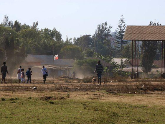 Les propriétaires marchent parfois des kilomètres pour venir à notre clinique en Tanzanie
