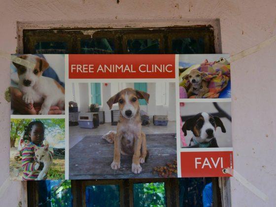 Notre affiche de la clinique en Tanzanie
