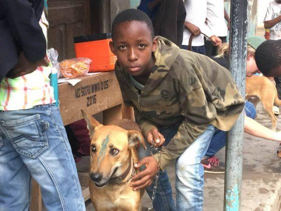 Un jeune homme et son chien à la station de vaccination. Un des 1235 chiens immunisés contre la rage durant ce projet.