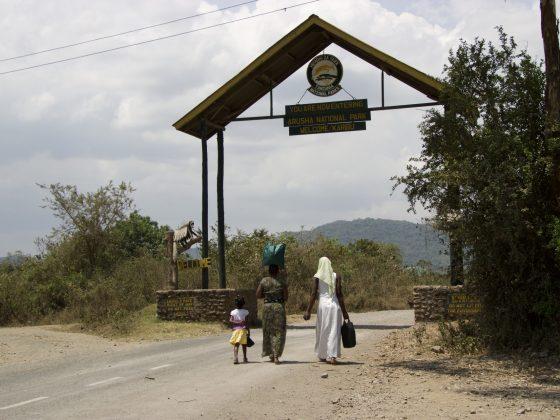 La première journée en clinique de la FAVI avait lieu dans la Zebra House à l'entrée du parc national d'Arusha