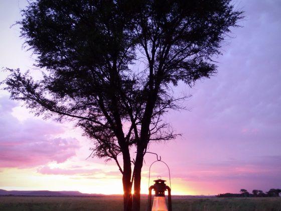 Vue de notre tente lors du safari FAVI en Tanzanie