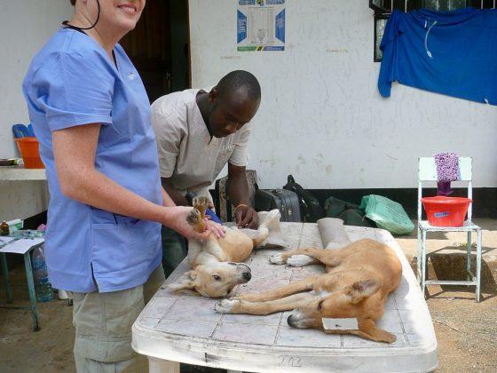 Zone pré-opératoire à la clinique de Baraa en Tanzanie
