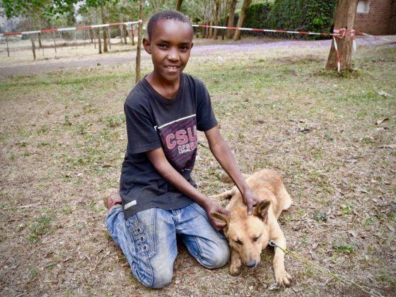 Un jeune tanzanien et son chien à la clinique d'Arusha