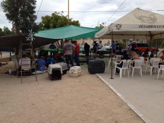 clinique FAVI en plein air au Mexique
