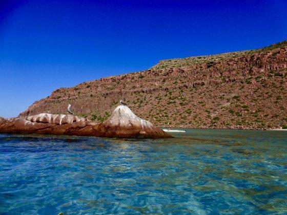 kayak au parc d'Espiritu Santo à Baja California