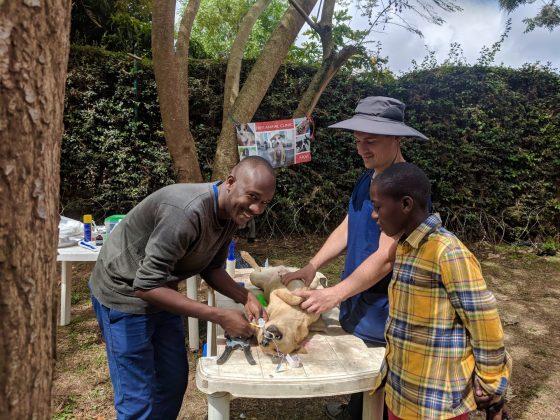 Zone préopératoire à la clinique FAVI en Tanzanie