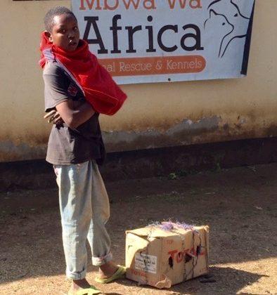 Les patients de la FAVI arrivent souvent dans une boîte de carton. Simple et économique.