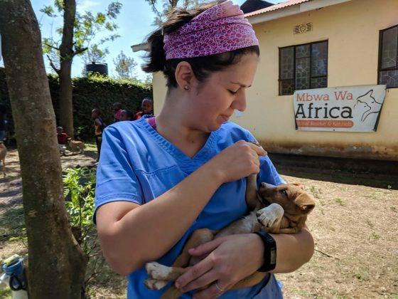 Émilie, notre technicienne bénévole, réconforte un chiot