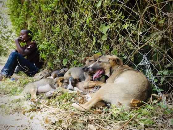 Salle d'attente de la clinique FAVI en Tanzanie