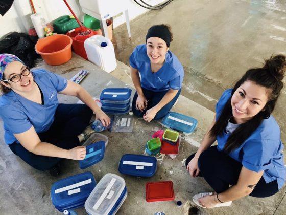 Bénévoles FAVI à la clinique de stérilisation au Belize