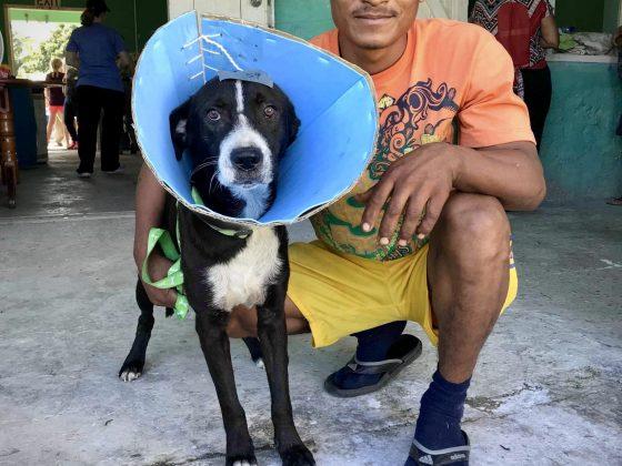 Un belizien et son chien à la clinique de stérilisation FAVI au Belize