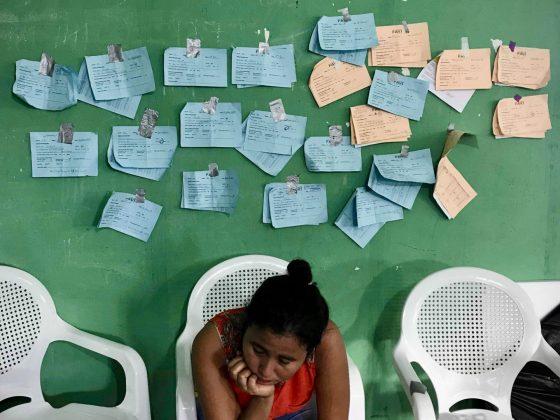 Les dossiers des animaux à stériliser à la clinique de la FAVI au Belize