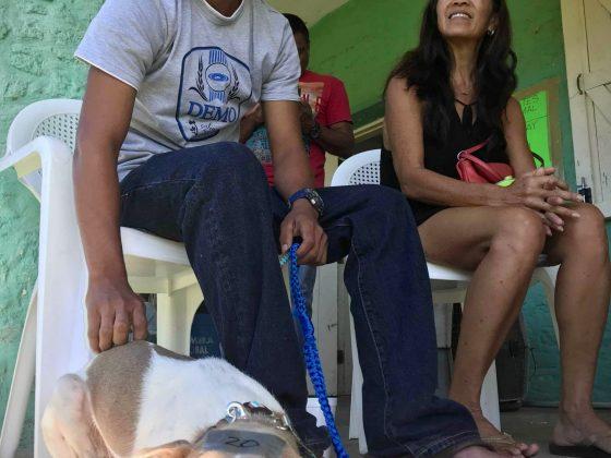 Salle d'attente à la clinique vétérinaire FAVI au Belize