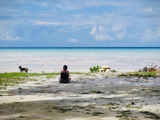 Bénévole FAVI à la plage avec un chien à Sarteneja