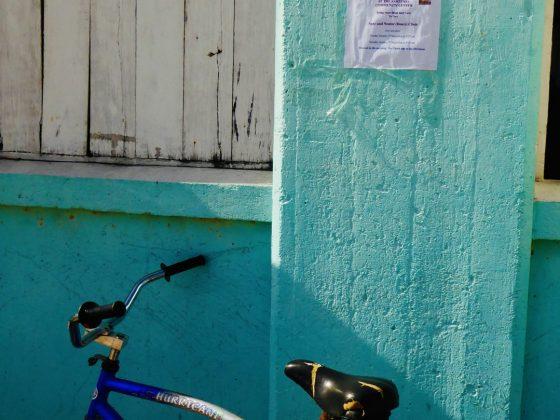 Clinique de stérilisation FAVI à Sarteneja Belize